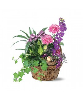 Basket Garden with Bird