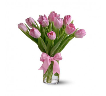 Spring Tulips - Light Pink