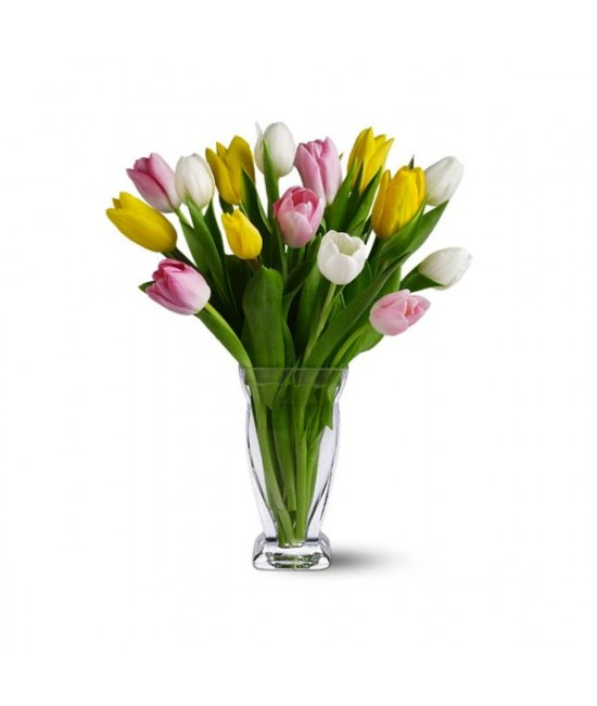 Fifteen Mixed Tulips