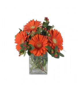 The Gerbera celebrating bouquet