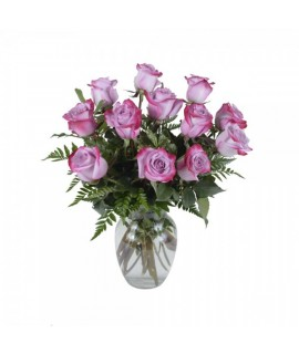 The 12 pink roses bouquet