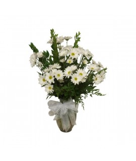 White Daisy arrangement