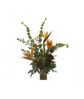 Equatorial Delight arrangement