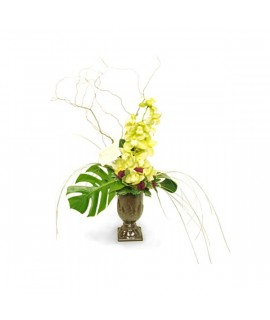Sublime Orchid Arrangement