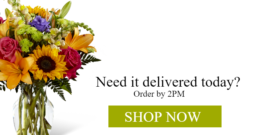 Need it delivered today?